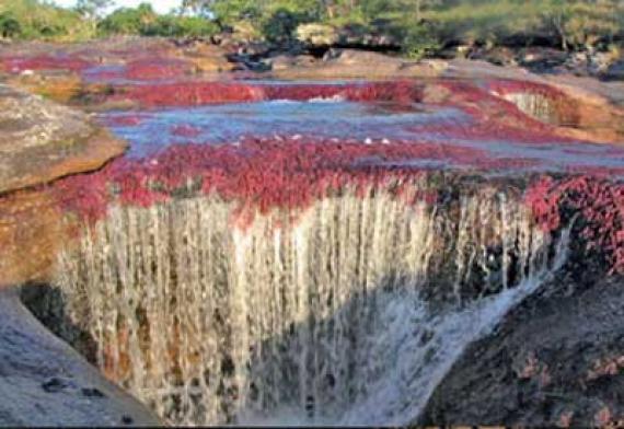 Το πιο ποτάμι που ξεκινάει απ' τον παράδεισο
