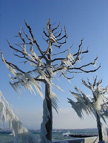 παγωμένο τοπίο