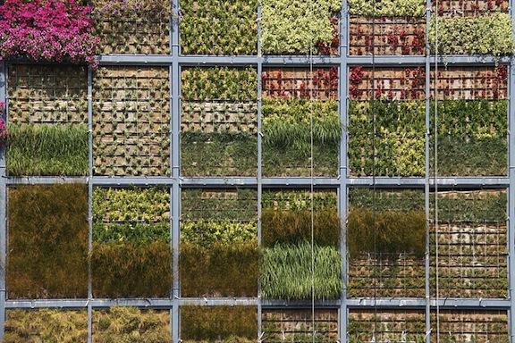 perierga.gr - Κατακόρυφος κήπος