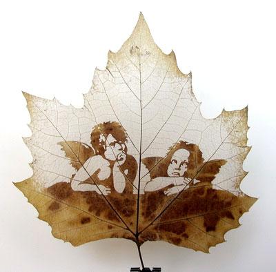 perierga.gr - Φύλλα δέντρων