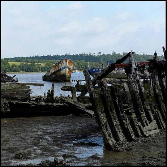 Perierga.gr - Νεκροταφείο ψαρόβαρκων