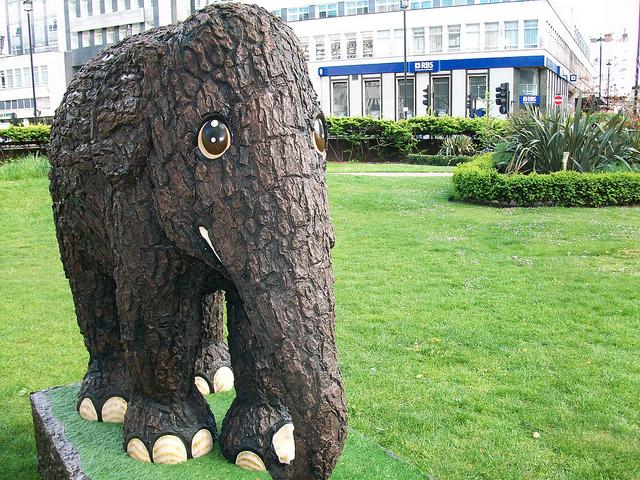 Perierga.gr - Πολύχρωμοι ελέφαντες