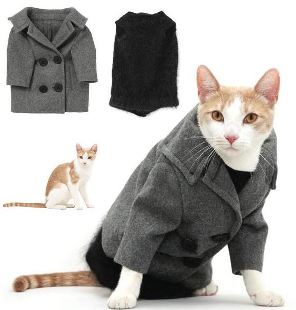 Perierga.gr - Εκπληκτικά κουστούμια για το γάτο σας!