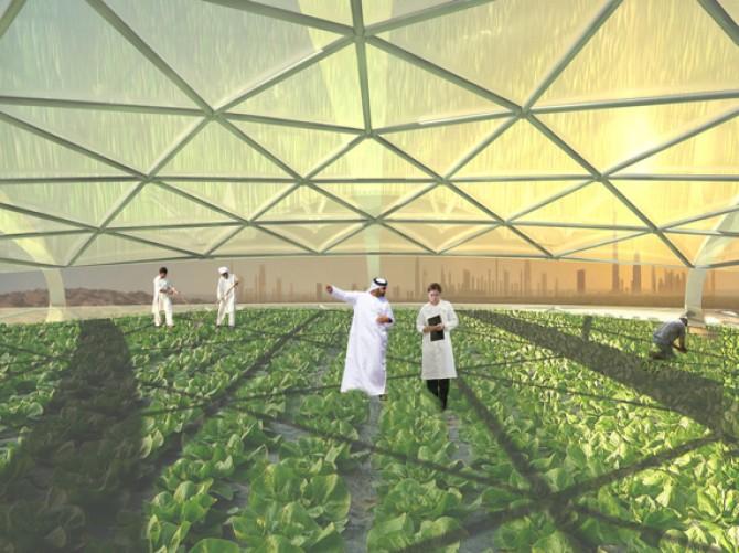 Perierga.gr - Φάρμα στο Ντουμπάι