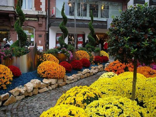 Perierga.gr - Flower Festival in Germany!