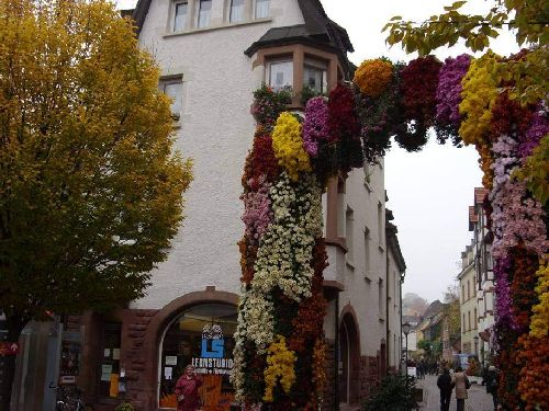 Perierga.gr - Flower Festival in Germany!