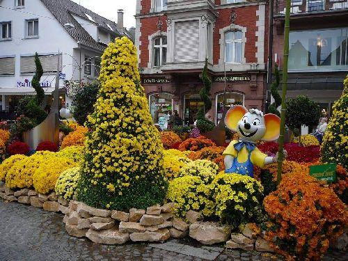 Perierga.gr - Φεστιβάλ λουλουδιών στη Γερμανία!