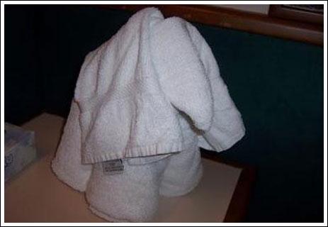 Perierga.gr - Περίεργες πετσέτες!