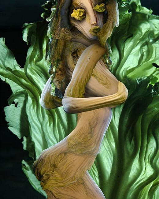 Perierga.gr - Τέχνη με ... λάχανα