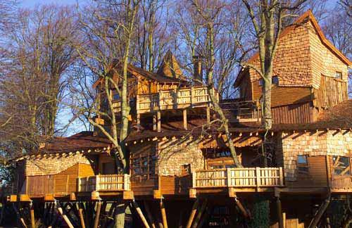 Perierga.gr - Το μεγαλύτερο σπίτι σε δέντρα!