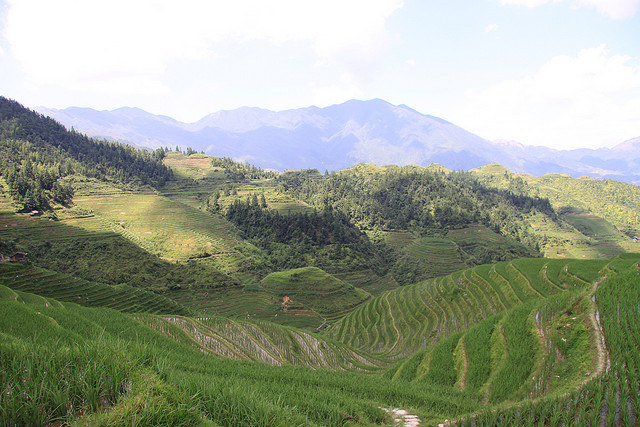 Perierga.gr - Longji Terraces