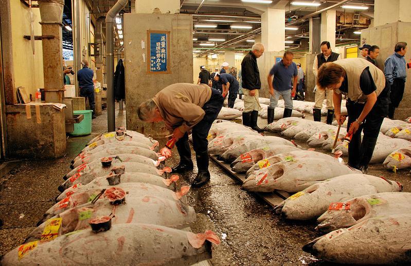 Perierga.gr - Η μεγαλύτερη ψαραγορά του κόσμου!