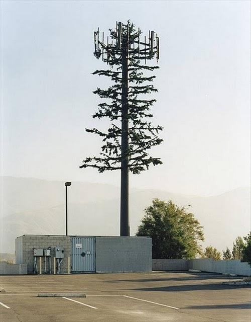Perierga.gr - Καμουφλάζ για κεραίες κινητής τηλεφωνίας