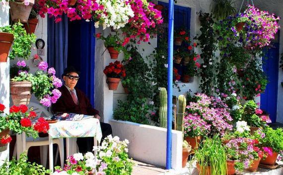 Perierga.gr - Φεστιβάλ λουλουδιών στην Κόρδοβα!
