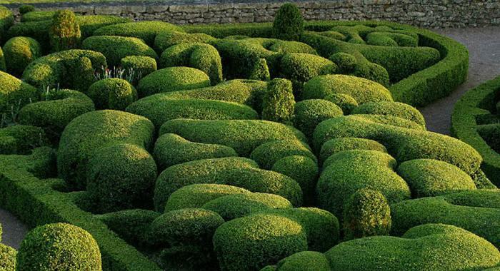 Perierga.gr - Πανέμορφος κήπος