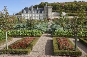 Μεσαιωνικός κήπος λαχανικών