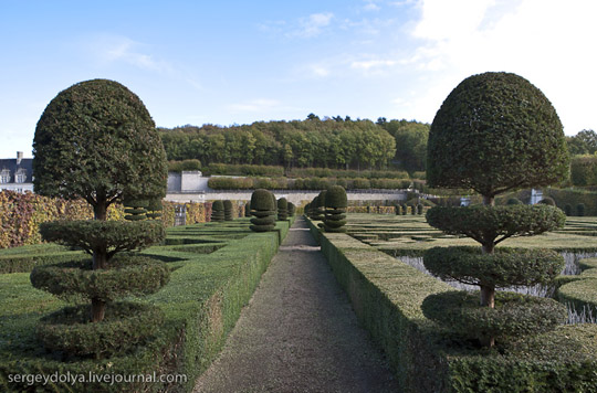 Perierga.gr - Ο κήπος του κάστρου Villandry