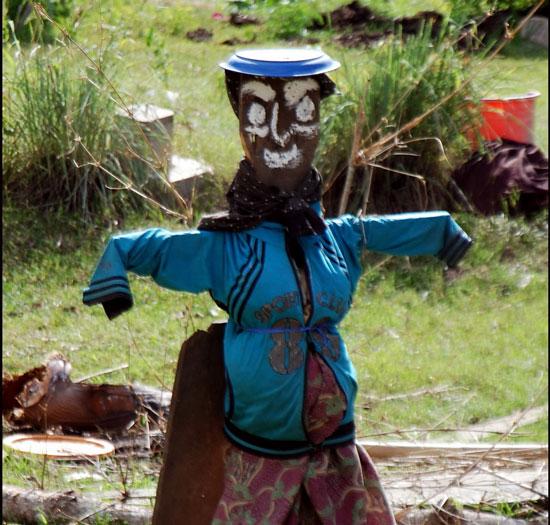 Perierga.gr - Τρομακτικά σκιάχτρα στην Καμπότζη