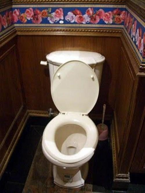 Perierga.gr - Η εξέλιξη της τουαλέτας!