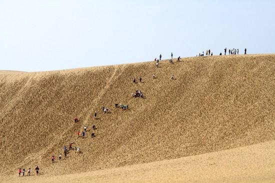Perierga.gr - Μοναδικοί αμμόλοφοι στην Ιαπωνία
