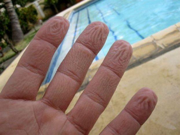 Perierga.gr - Ρυτιδιασμένα δάχτυλα