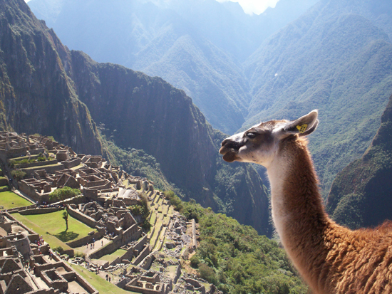 diaforetiko.gr : Machu Picchu 16 Μάτσου Πίτσου, η χαμένη πόλη των Ίνκας