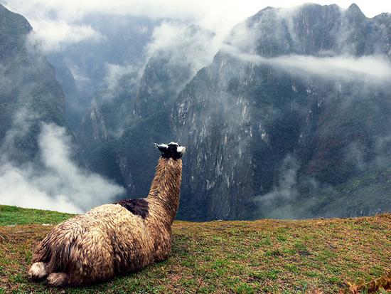 diaforetiko.gr : Machu Picchu 9 Μάτσου Πίτσου, η χαμένη πόλη των Ίνκας