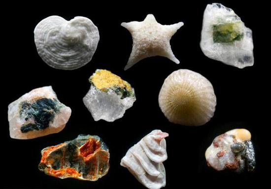 Τι σχήμα έχουν οι κόκκοι της άμμου;