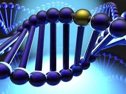 Perierga.gr - Βρέθηκε το γονίδιο της ευτυχίας