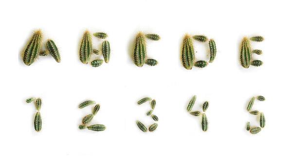 perierga.gr - Γράμματα φτιαγμένα από τα πιο απίθανα υλικά!