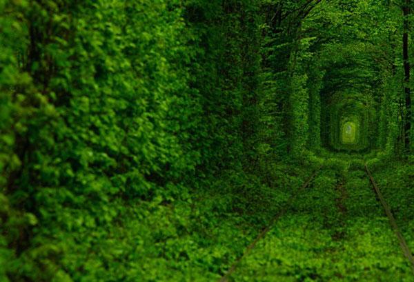 "perierga.gr-Το μαγικό ""τούνελ της αγάπης""!"