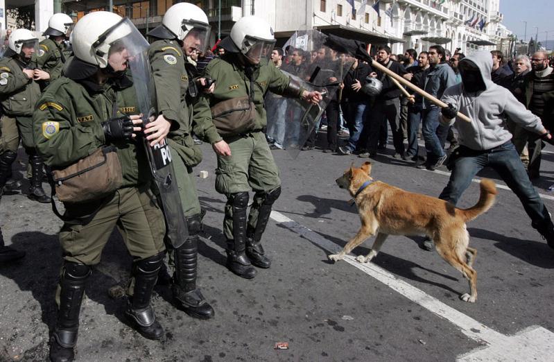 Perierga gr λουκάνικος σκύλος της χρονιάς