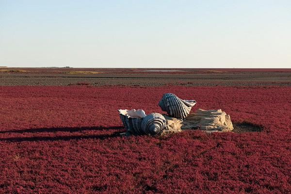 perierga.gr - Η λίμνη με τα κατακόκκινα... καλάμια!
