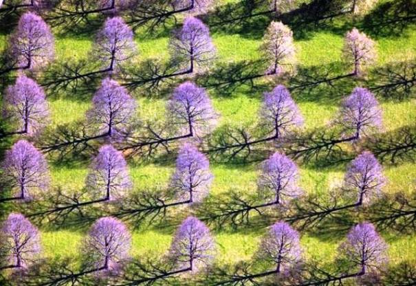 perierga.gr - Όταν κοιτάς από ψηλά μοιάζει η γη με ζωγραφιά...