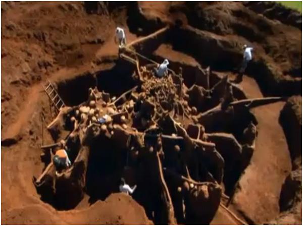 perierga.gr - Το Σινικό Τείχος των... μυρμηγκιών!