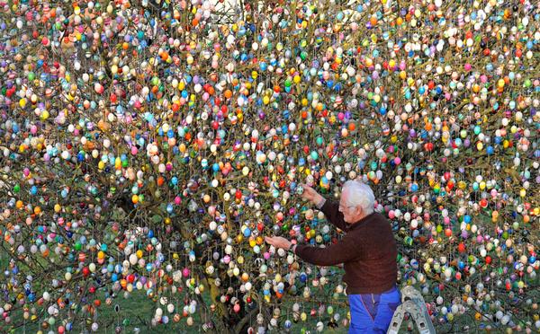 Ένα δέντρο με 10.000 πασχαλινά αβγά!