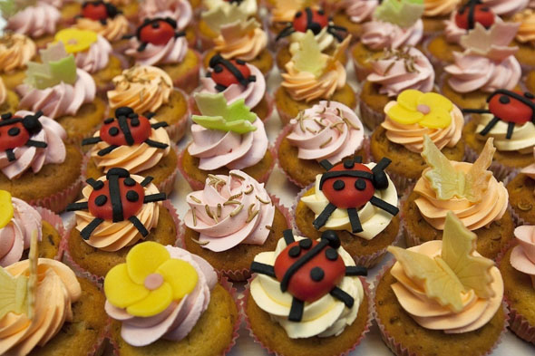 Insect Cookbook: Μαγειρική με έντομα!