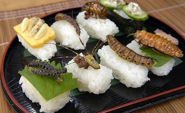 perierga.gr - Insect Cookbook: Μαγειρική με έντομα!