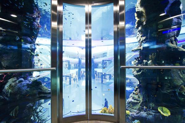 perierga.gr - Με ασανσέρ στο κέντρο του ενυδρείου!