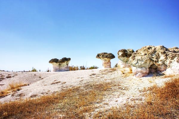 """Perierga.gr - Το δάσος με τα """"πέτρινα μανιτάρια""""!"""