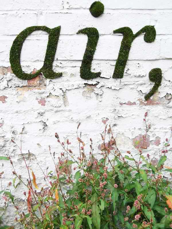 """perierga.gr - Τα γκράφιτι """"φυτρώνουν"""" στους τοίχους!"""