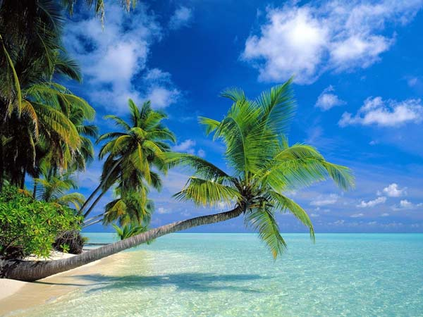 diaforetiko.gr : maldives3 Μαλδίβες....ο παράδεισος επί γης!