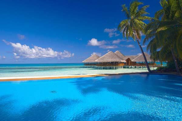 Μαλδίβες: Βουτιά και... συχώριο!