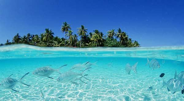 diaforetiko.gr : maldives8 Μαλδίβες....ο παράδεισος επί γης!