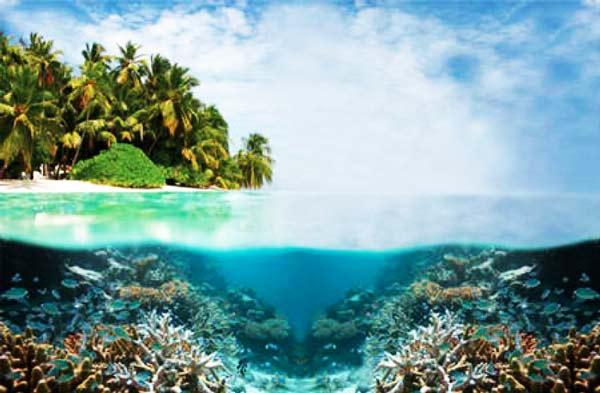 """Ύφαλοι Tubbataha: Φιναλίστ στα """"7 θαύματα της φύσης""""!"""