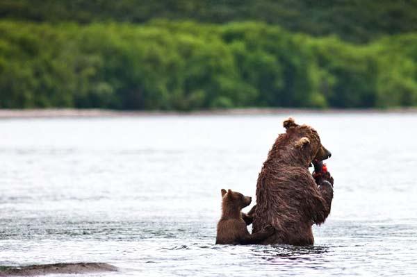 perierga.gr - Να τρώει η μάνα και του παιδιού να μη δίνει!