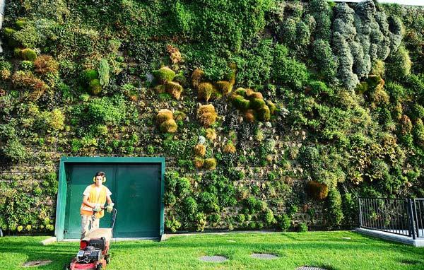perierga.gr - Ο μεγαλύτερος κάθετος κήπος στον κόσμο!