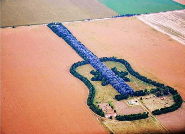 perierga.gr - Ένας κήπος σε σχήμα... κιθάρας!