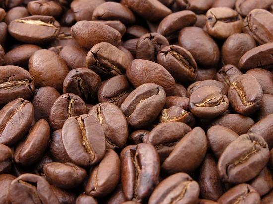 """perierga.gr - Οι ελέφαντες """"παράγουν"""" τον καλύτερο καφέ!"""