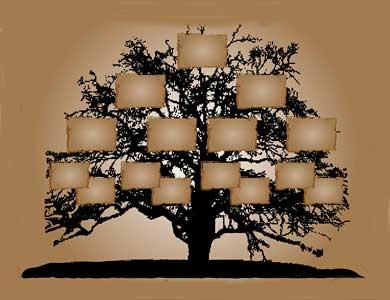 http://perierga.gr/wp-content/uploads/2012/10/family_tree.jpg